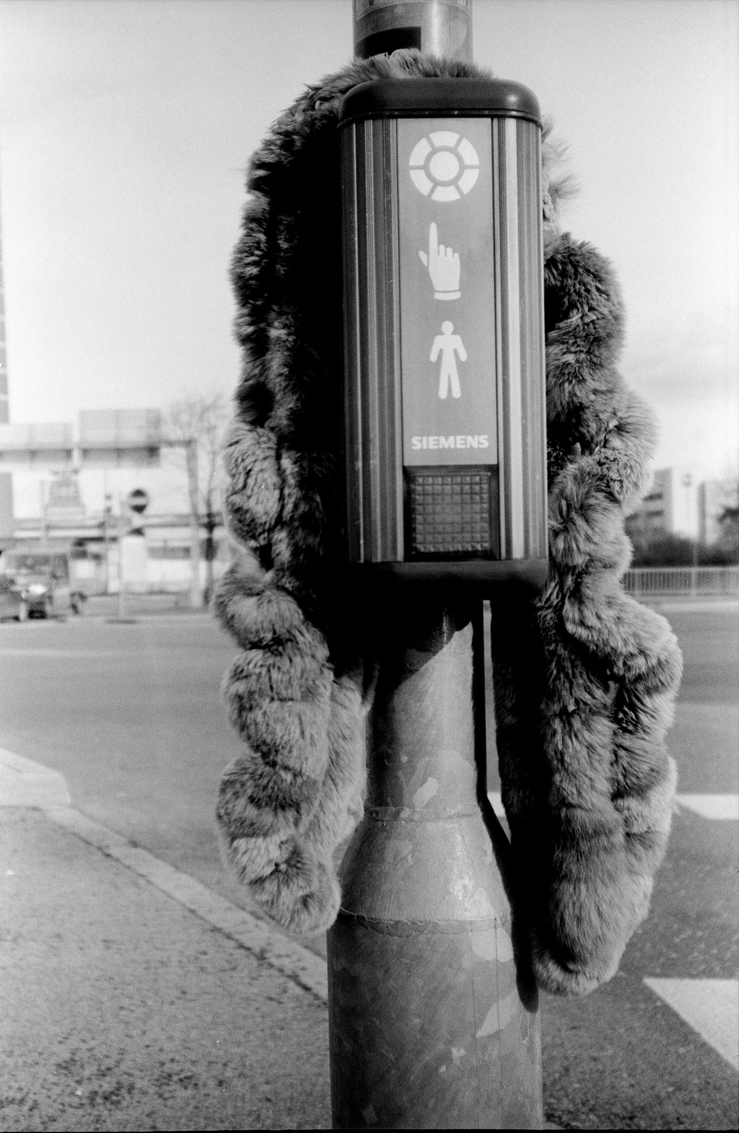 #055 The Lost Fur