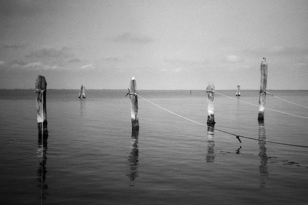#134 Sea Posts, Pellestrina, Italy