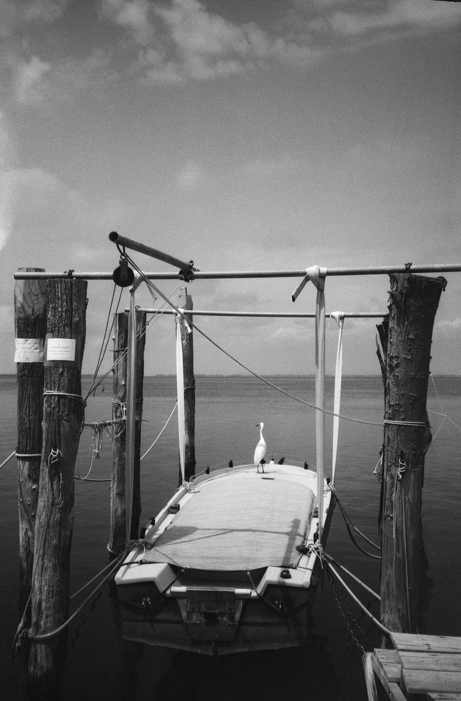 #136 Sea Posts and Boat, Pellestrina, Italy