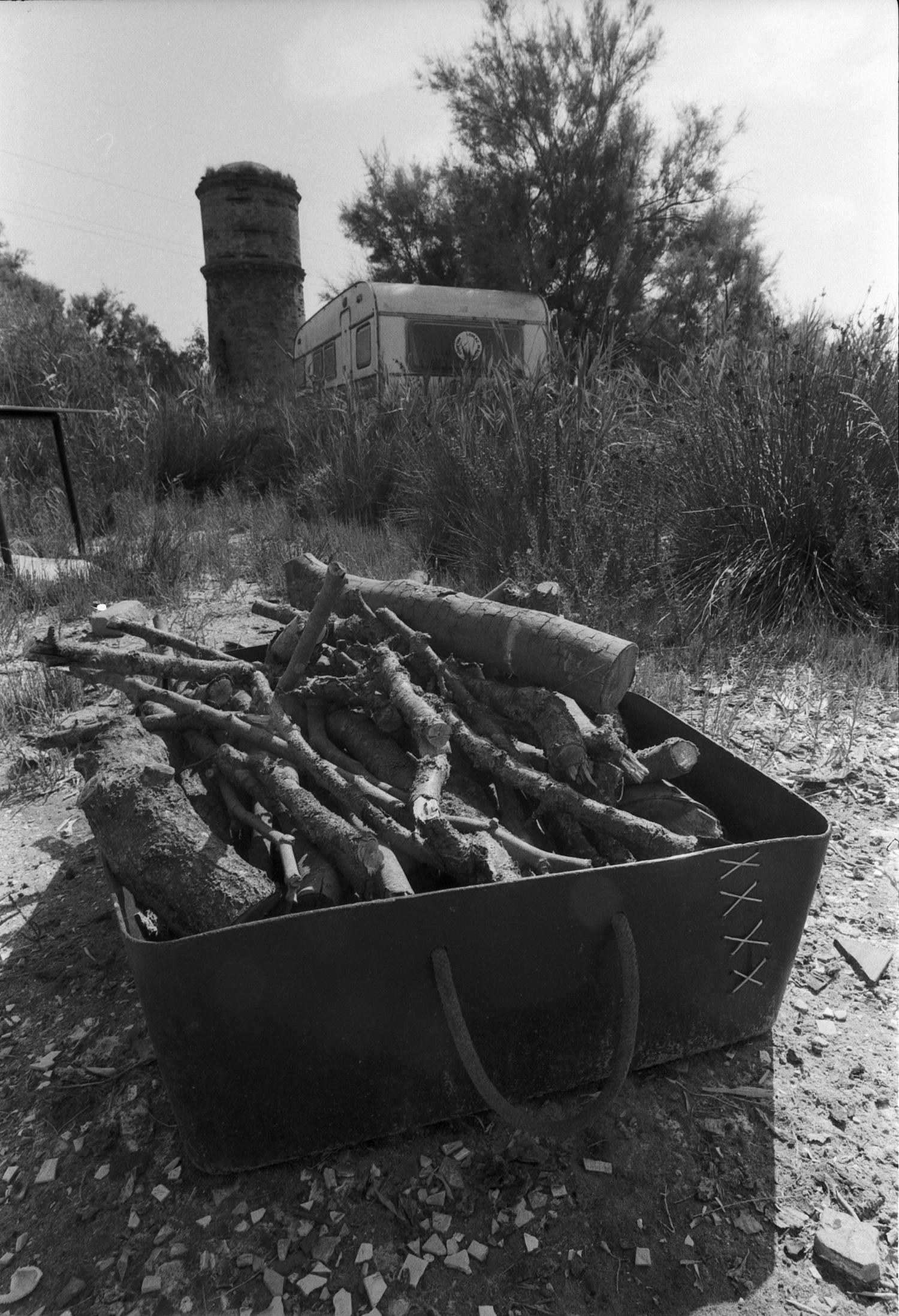 #144 Fire wood - Le Salina, Ferrara, Italy