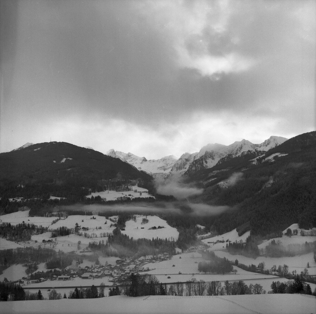 Birnbergblick - Fujilm Acros Neopan developed in Rodinal