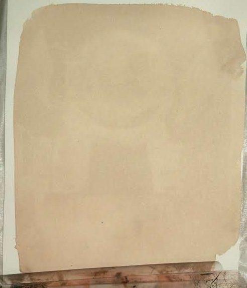 Brown RollRim Anthotype - after 2 days