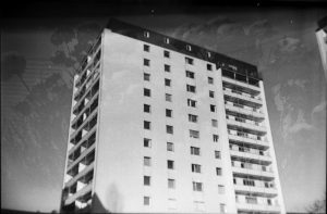 Building Block with Flowers - Ilford FP4 125 with Agfa Clack