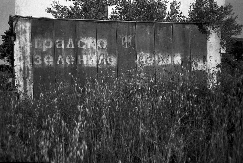 Container-in-Sućuraj-Hvar
