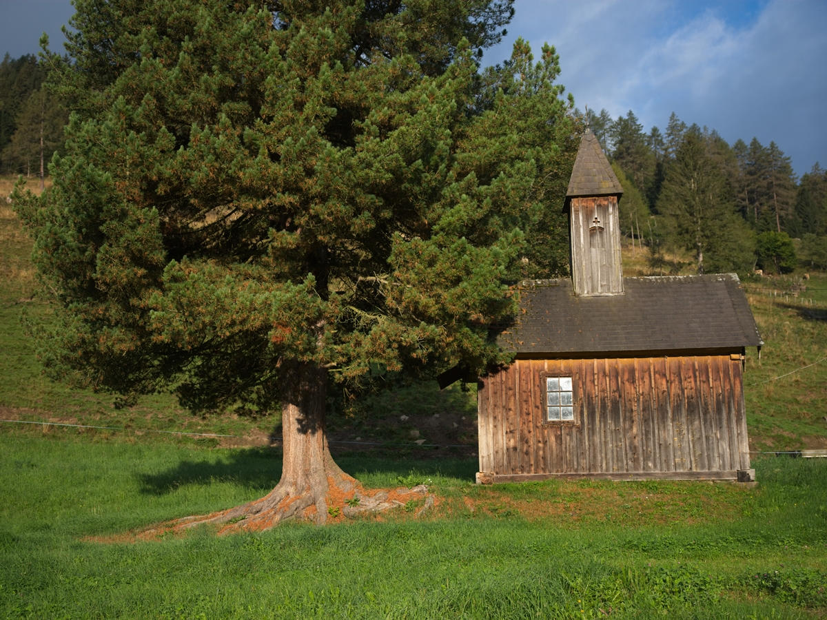 Allgau - small farmhouse chapel