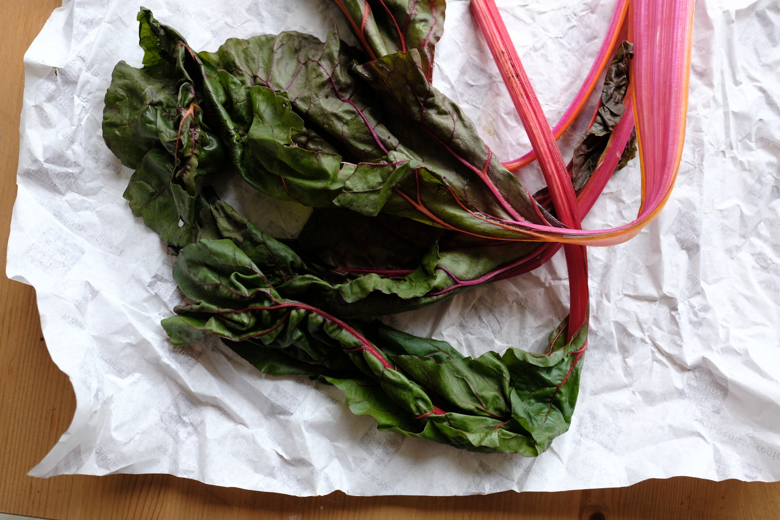 Swiss Chard Anthotype