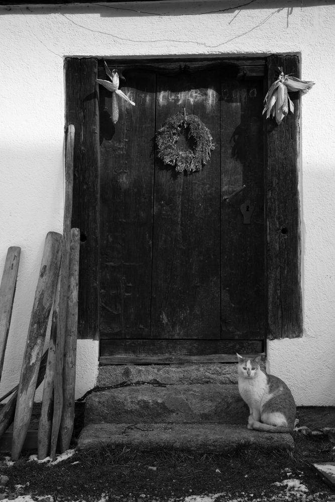 Door and Cat, Weißenbach