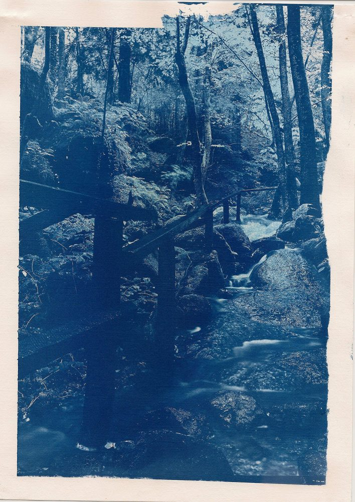 The overflowed path, Ysperklamm - Cyanotype