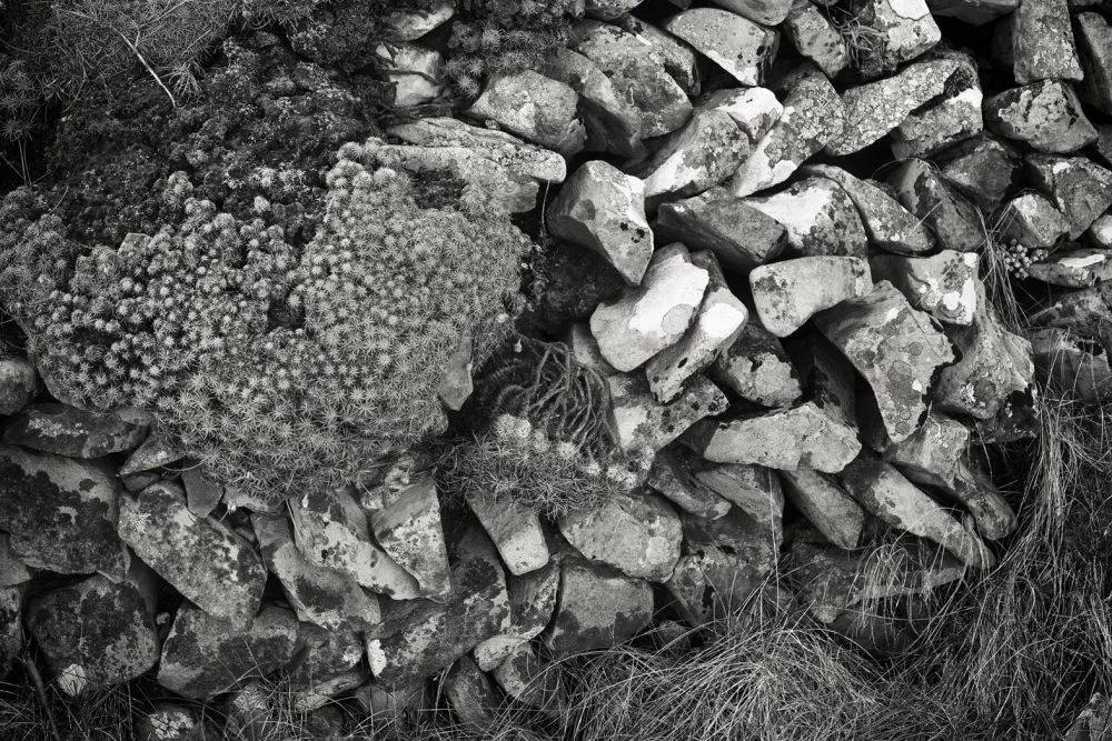 Stone Wall, Loop Head
