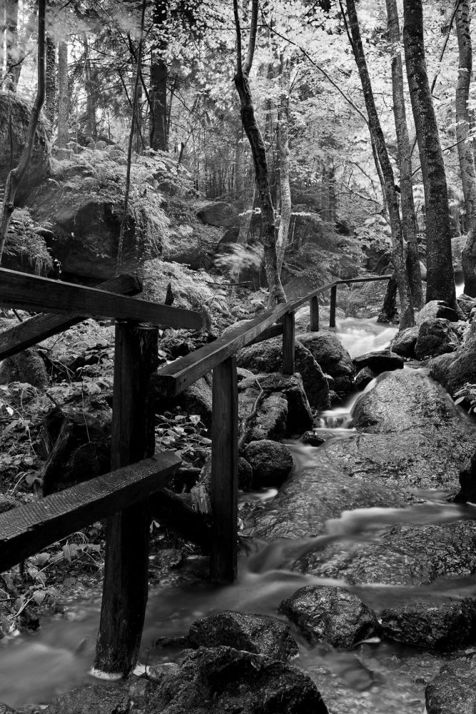 The overflowed path, Ysperklamm