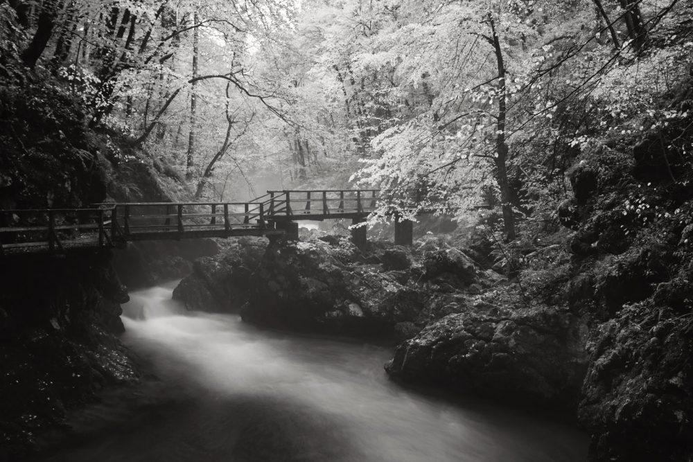 Vintgar Gorge #3