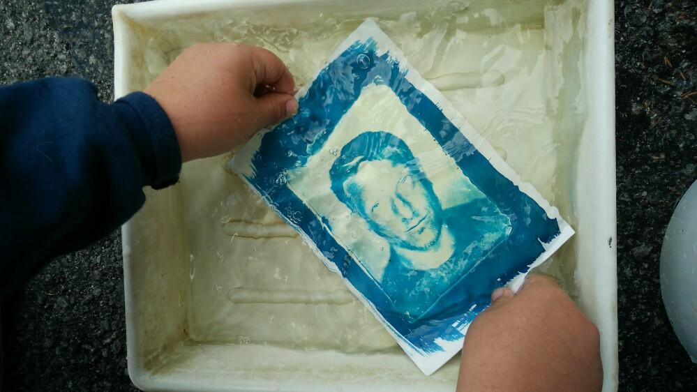 Developing Cyanotype in water - Wet Plate Glass Negative