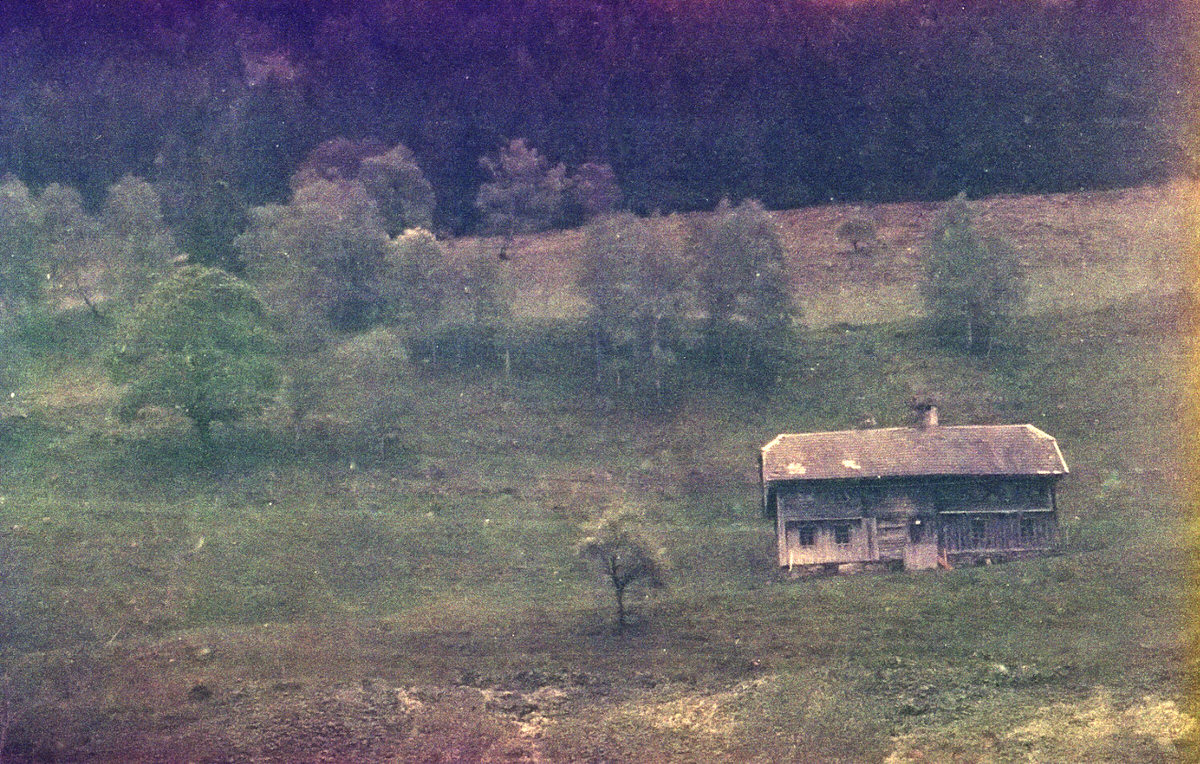 After the Solkpass - Kodacolor 400 Expired 1987, Contaflex Super #